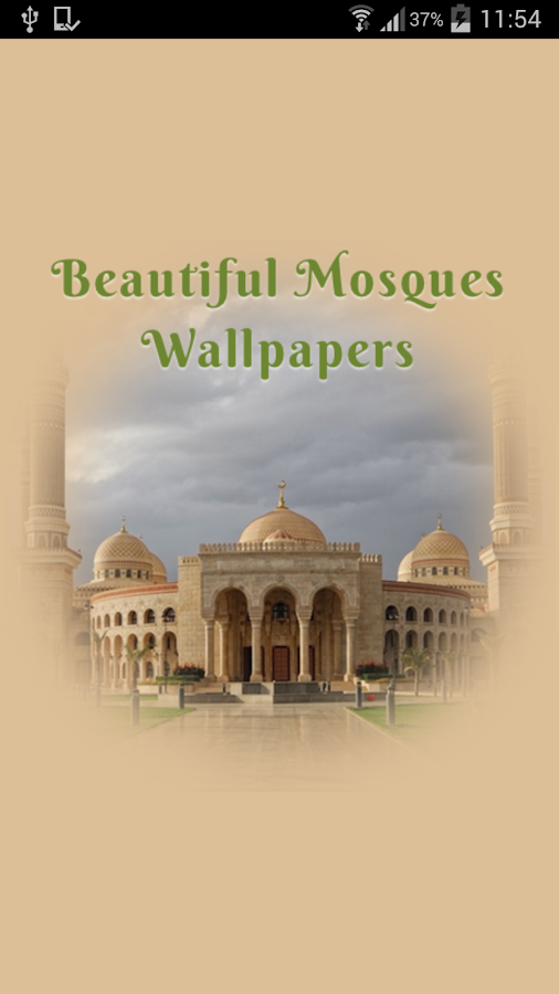 Beautiful Mosques Wallpapers- screenshot