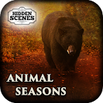 HS - Animal Seasons