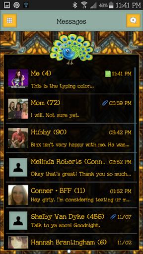 GO SMS THEME - SCS348