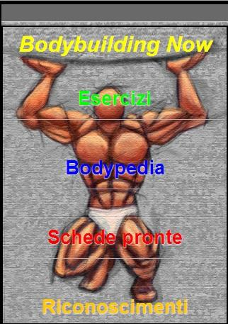 Bodybuilding Now- screenshot