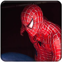 Spiderman Ultimate Fan Edition