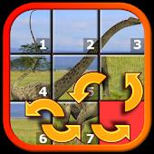 Kids Dinosaur Rex Slide Puzzle
