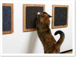 itch-cat-scratch-pad1