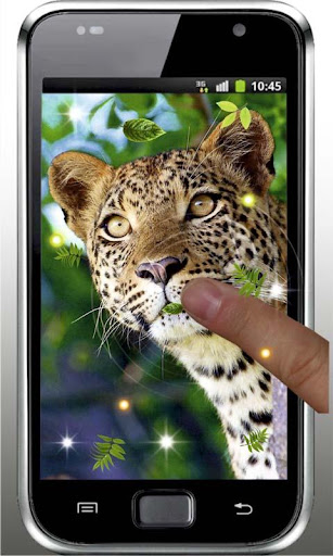 Jaguar Cool live wallpaper