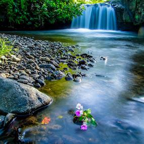by Dugalan Poto - Nature Up Close Water ( water, central java, kali gung, dugalanisme, indonesia, dugalan, waterfall, stone, bumijawa, flower, tegal, river,  )