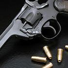 枪械拼图 icon