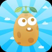 Fly Potato
