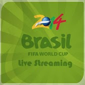 Fifa World Cup 2014 Live Match