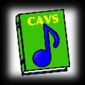 CAVS RS-II