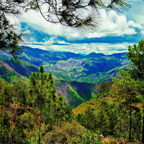 mountain trees by Charles Saunders - Novices Only Landscapes ( mountains, sky, trees, dominican republic )