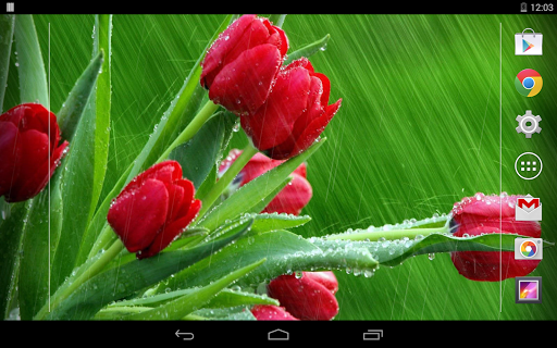 Rain Rose Live Wallpaper  screenshots 8