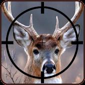 Deer Hunting Free Sniper Tips