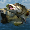Bass Fishing Mania logo