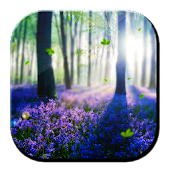 Forest Lavender HD LWP App