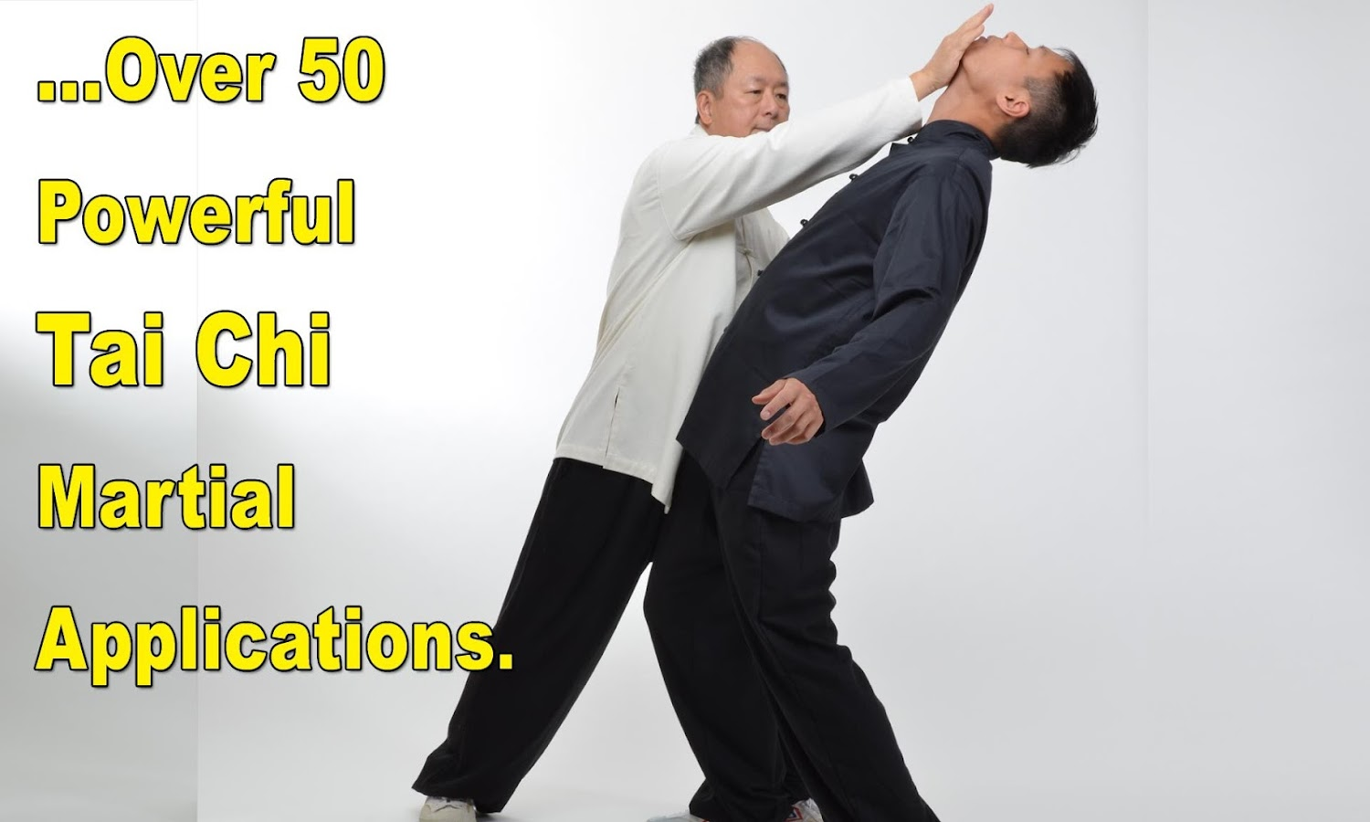Tai Chi Martial Applications- screenshot