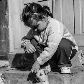 Sweet childhood by Suciu Corina - Babies & Children Children Candids ( countryside, black and white, puppy, childhood, kid,  )