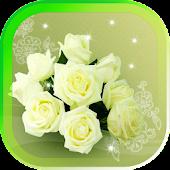 Roses White live wallpaper