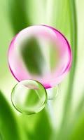 Screenshot of iBubbles Popping