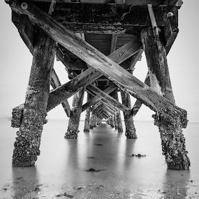 Yorktown Pier by Givanni Mikel - Black & White Buildings & Architecture ( sand, pier, yorktown, river, pillars,  )