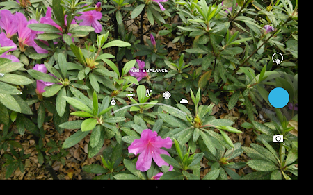HD Camera for Android 4.4.2.5 screenshot 4039