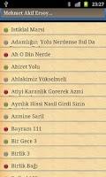 Screenshot of Turk siirleri