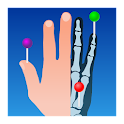 IMAIOS e-Anatomy icon