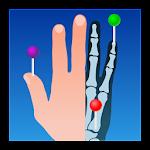 IMAIOS e-Anatomy v2.1.3