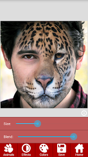 Animal Faces - Face Morphing- screenshot thumbnail