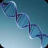 Human Genetics lite