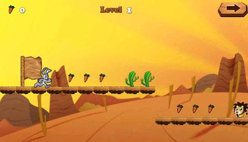 Looney Run Desert Adventure