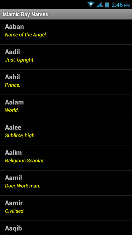 Islamic Boy Names - screenshot