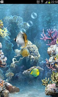 Free game fish tank 3d live wallpaper for lumia for Fish live game