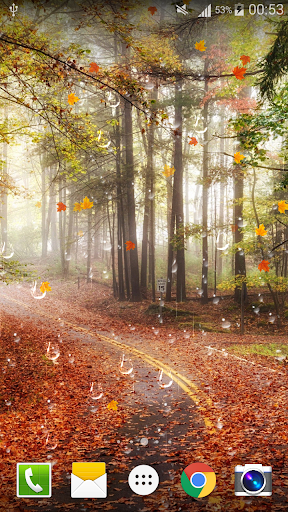 玩個人化App|楓葉雨滴動態桌布 Free (PRO)免費|APP試玩