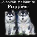 Alaskan Malamute Puppies logo