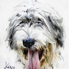 Dog portrait by Daliana Pacuraru - Drawing All Drawing ( traditional, dog, portrait, drawing, pencils,  )