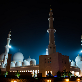 Sheikh Zayed Mosque by Aamir Munir - Buildings & Architecture Places of Worship ( night photography, mosque, uae, place of worship, abu dhabi, mosque in abu dhabi, sheikh zayed mosque )