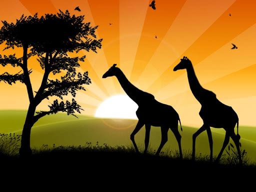 Safari Free Puzzles