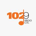 102,9 FM icon