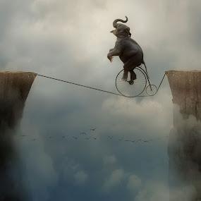 Tightrope  by Michael Dalmedo - Digital Art Things (  )