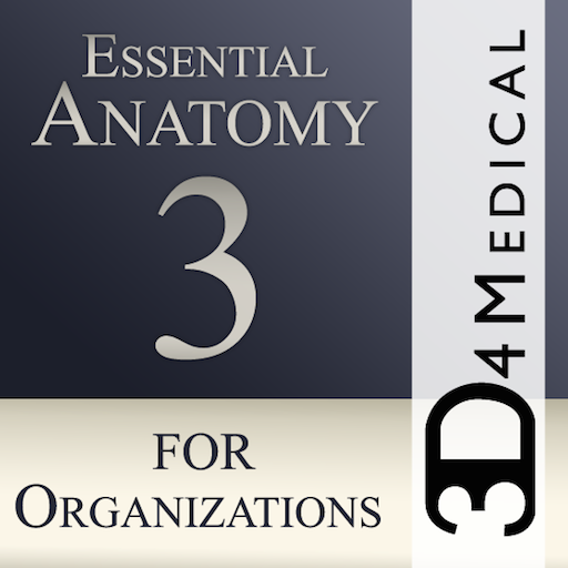 Essential Anatomy 3 for Orgs.