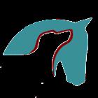 PhotonicHealth Horse Acupoint icon