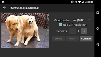 Screenshot of Convert GIF to Video & Share