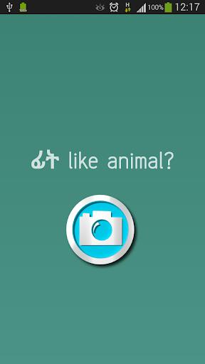 ፊት like animal