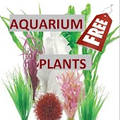 Aquarium Plants Free