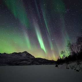 Northern lights by Marius Birkeland - Landscapes Starscapes (  )