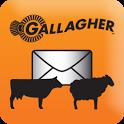 Gallagher Animal Data Transfer icon