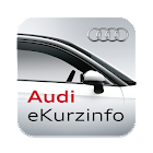 Audi eKurzinfo icon