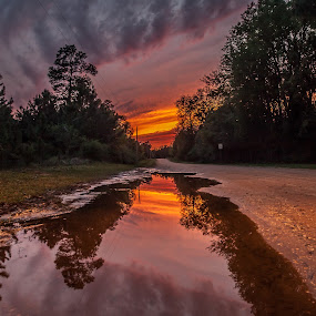 Sunset in a puddle by Shelley Patterson - Landscapes Sunsets & Sunrises ( sky, sunset, dirt road, trees, alabama, puddle, rain )