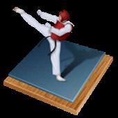 Taekwondo Bible (WTF)