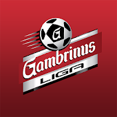 Gambrinus liga official
